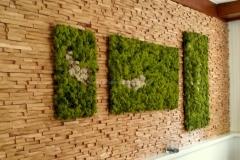 Mooswand - Islandmoos - Green - Hoteleinrichtung