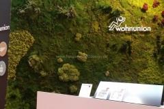 Mooswand - Moosbilder - Ladenbau